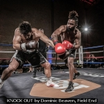 KNOCK OUT by Dominic Beaven, Field End