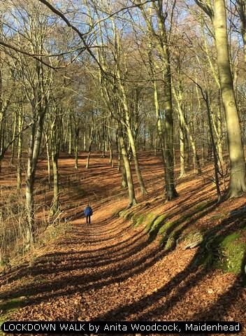 LOCKDOWN WALK by Anita Woodcock, Maidenhead